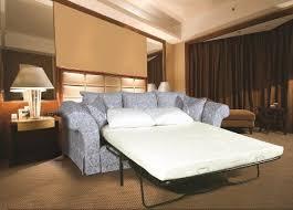 Replacement Sofa Bed Mattress Best 25 Sleeper Sofa Mattress Ideas On Pinterest Small Sleeper