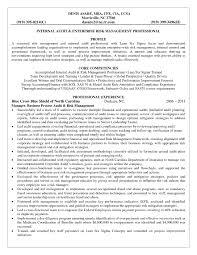 Sample Insurance Sales Representative Resume Life Insurance Agent Resume Twhois Resume