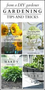 gardening tips 1146 best garden tips images on pinterest flower gardening