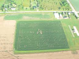 Chesterfield Pumpkin Patch 2015 izzi farm u2013 corn maze and pumpkin patch