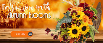 houston flower delivery houston florist flower delivery breen s florist