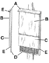 bat house plans free bat house plans pdf valine free bat house