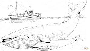 blue whales mother and baby under the boat coloring page free