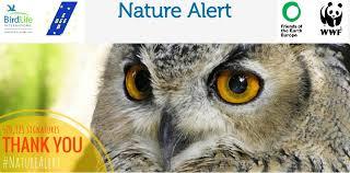 si e habitat natura e ue junker le direttive habitat e uccelli non si toccano