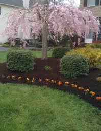 landscaping with rocks edging around tree roots planter box around