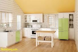 lime green kitchen ideas kitchen green kitchens unique kitchen country lime green kitchen