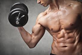 customized exercise plans customized workout plans