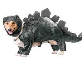 godzilla costume dog godzilla costume korrectkritterscom