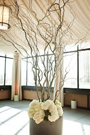 curly willow branches best 25 curly willow ideas on curly willow wedding