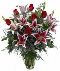 one dozen roses stargaze 95 95 110 95 in universal city tx bloomingtons