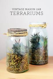 How To Make Home Decor Vintage Mason Jar Diy Terrarium Diycandy Com