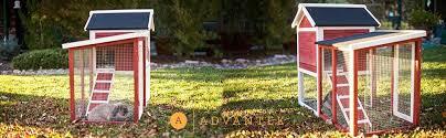 Rabbit Hutch Set Up Amazon Com Advantek The Stilt House Rabbit Hutch Garden U0026 Outdoor