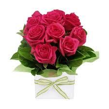 roses online roses sydney delivery sydney roses online
