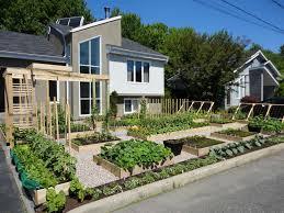 front yard vegetable garden design small backyard vegetable garden