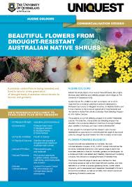 hardy australian native plants aussie colours uniquest the university of queensland australia