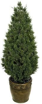 decorative faux cedar trees quality wholesale 6 cedar tree