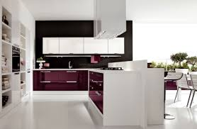 Designer Kitchen Hoods by Contemporary Kitchen Designed With Tube White Kitchen Range Hood