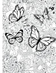 detailed butterfly coloring pages for adults butterflies coloring pages butterflies coloring pages detailed