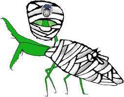 mantis u0026 bugs www bugs org