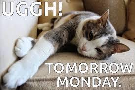 Monday Meme Images - 60 best collection monday memes