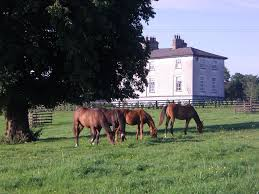 country house glebe house taghshinny ireland booking com gallery image of this property