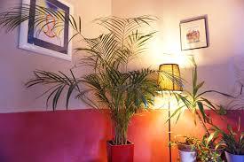 un bureau feng shui les couleurs feng shui pour les pièces de jour dans la maison et le