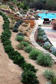 sloped yard with small shrubs and pool choosing the best