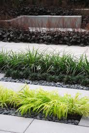 pavement edge ornamental grass search ideas to landscape