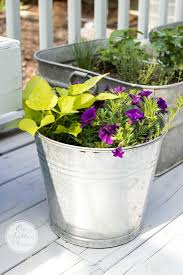 vintage galvanized wash tub herb garden on sutton place