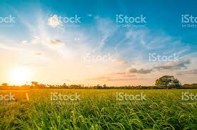 landscapes images Royalty free landscapes pictures images and stock photos istock