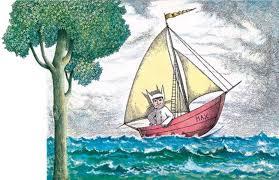 wild illo max boat