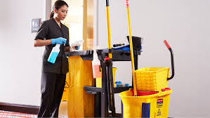 goodness of housekeeping services contentmart seo content id 36183