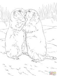 kissing prairie dogs coloring page print download animal