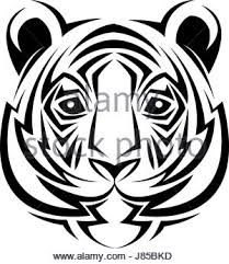 tiger tribal stock vector illustration vector image