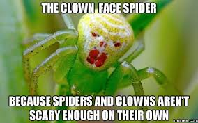 Spider Meme - the clown face spider memes com funny pinterest clown faces