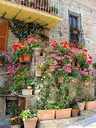 126 best medieval gardening programming images on pinterest