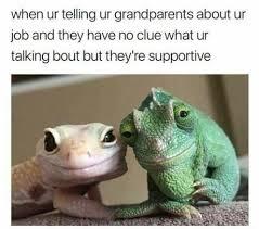 Lizard Meme - grandparents are the best memebase funny memes