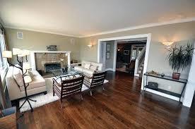 Vinyl Flooring Options Wonderful Flooring For Living Room Gallery Of Stunning Flooring