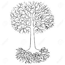 tree with roots on white background sketch royalty free cliparts
