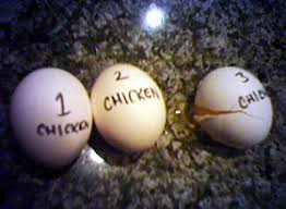 Count Your Chickens Before They Hatch Meaning Don T Count Your Bodogs Before They Hatch