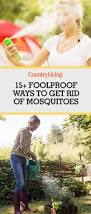 Eliminate Mosquitoes In Backyard by Best 25 Mosquito Spray For Yard Ideas On Pinterest Keep