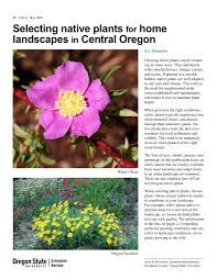 native plants to oregon selecting native plants for home landscapes in central oregon