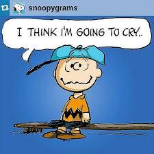 Charlie Brown Memes - 587 best peanuts baseball images on pinterest peanuts gang
