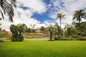 Botanical Gardens Melbourne Royal Botanic Gardens Melbourne Reviews U S News Travel