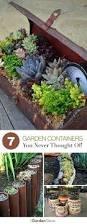 Vegetable Container Garden - easy indoor vegetable container gardening easy container gardening