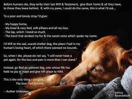 pet memorials animal rescue pet memorials
