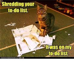 Shredding Meme - 25 best memes about shredding shredding memes