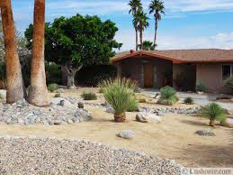desert landscaping ideas to save water and create low maintenance