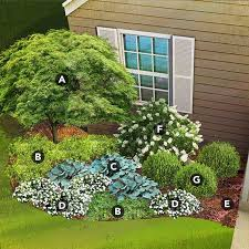 shade garden plan for south region featuring japanese maple