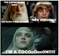 Frodo Meme - frodo cocoon know your meme